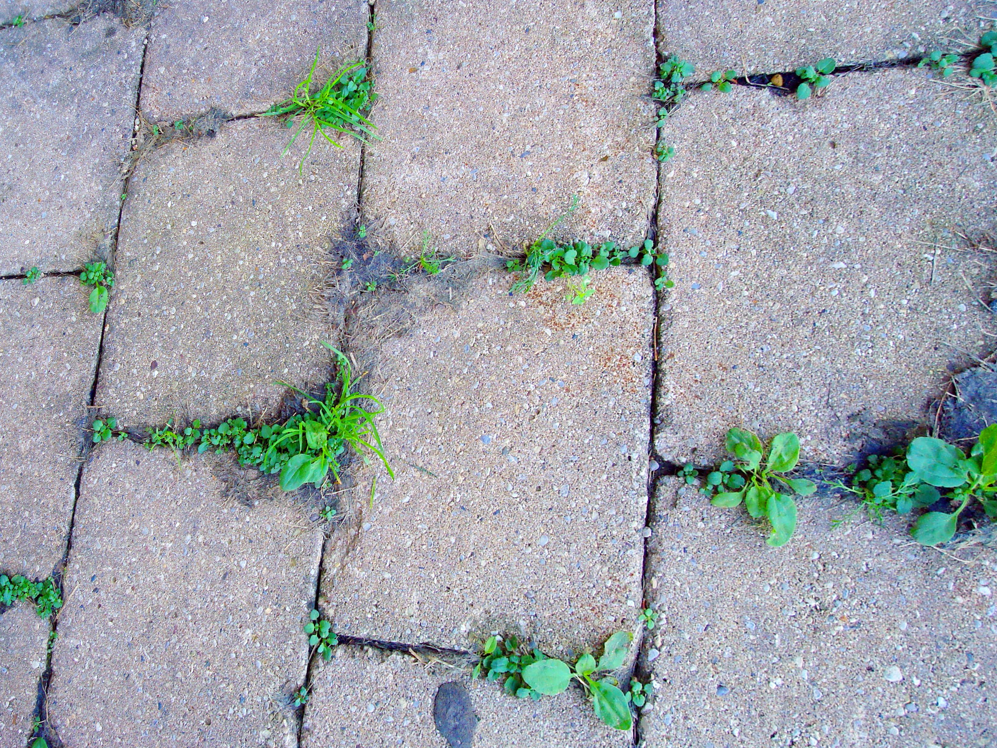 Brick Restoration
